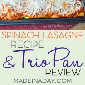 Spinach Lasagna and a Lasagna Trio Pan Review 6