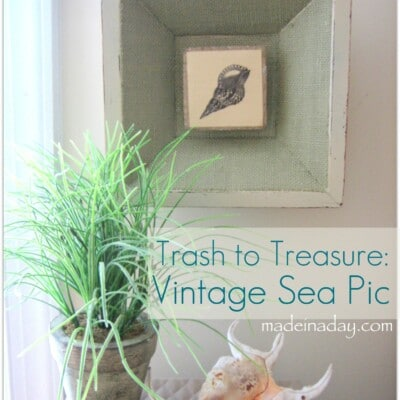 Burlap Sea Shell Pics