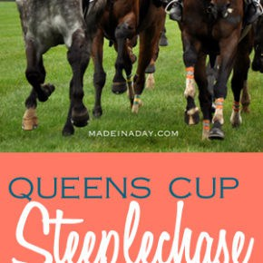 Queens Cup Steeplechase 1