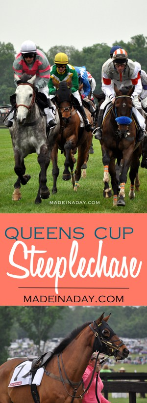 Queens Cup Steeplechase ~Horse Race Fun! Great photos of amazing horses from this super fun horse race!