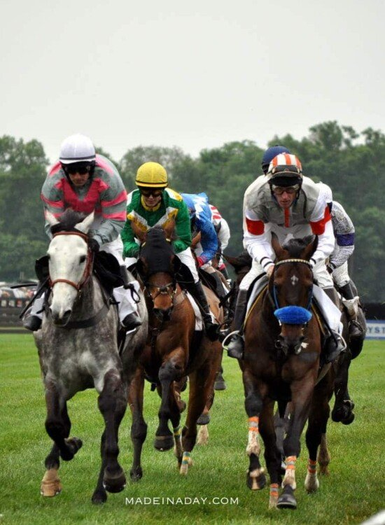 Queens Cup Steeplechase 39