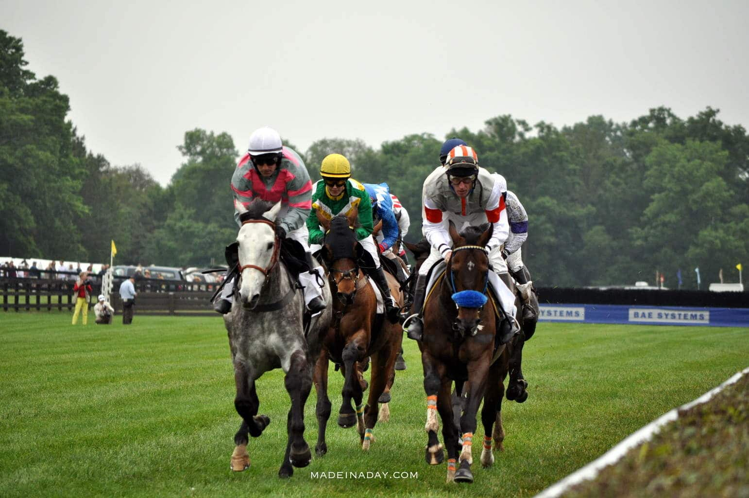 Queens Cup Steeplechase