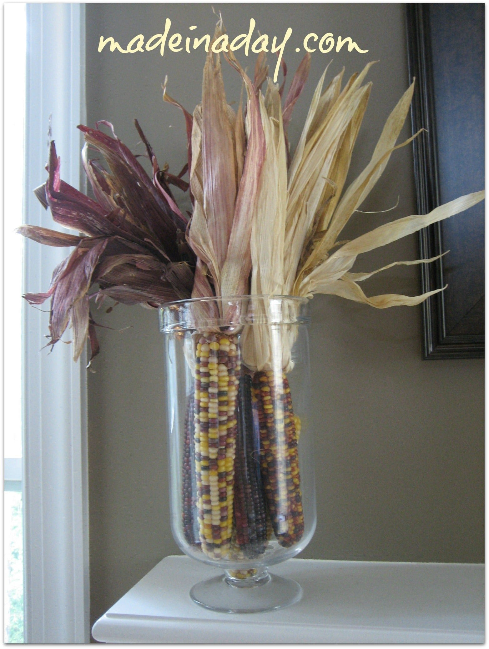Indian Corn in a jar
