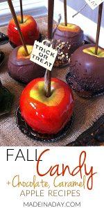 Fall Candy Apple Recipes 1