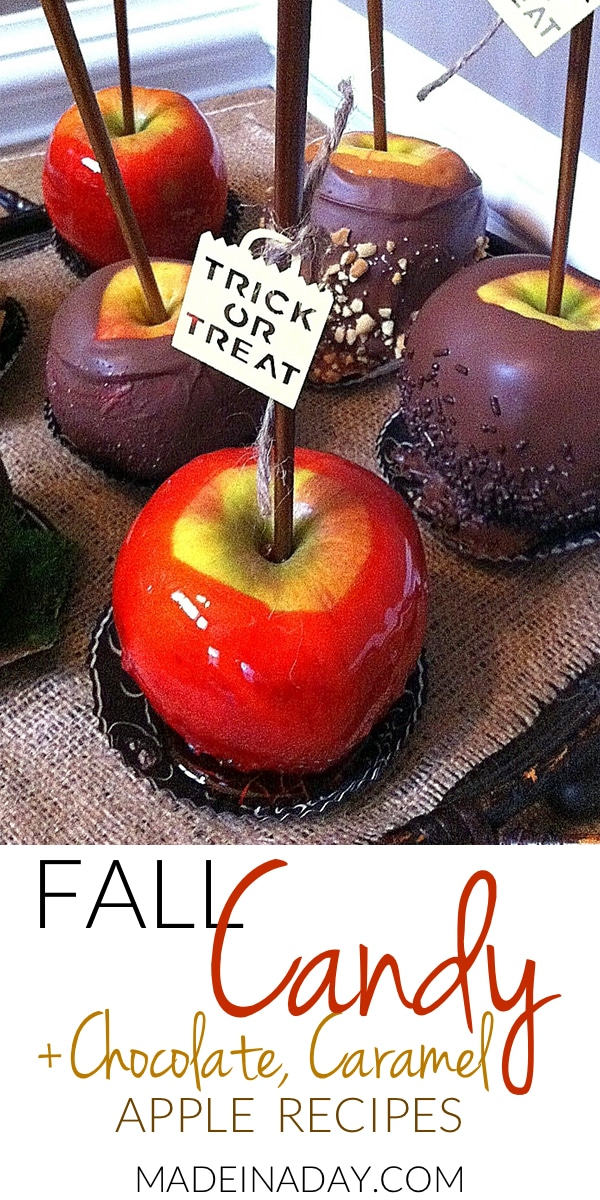 Fall #Candy #Apple Recipes~ #Chocolate , # Caramel & Original candy-coated apple recipes, apples dipped in chocolate covered with sprinkles, caramel apples with nuts,