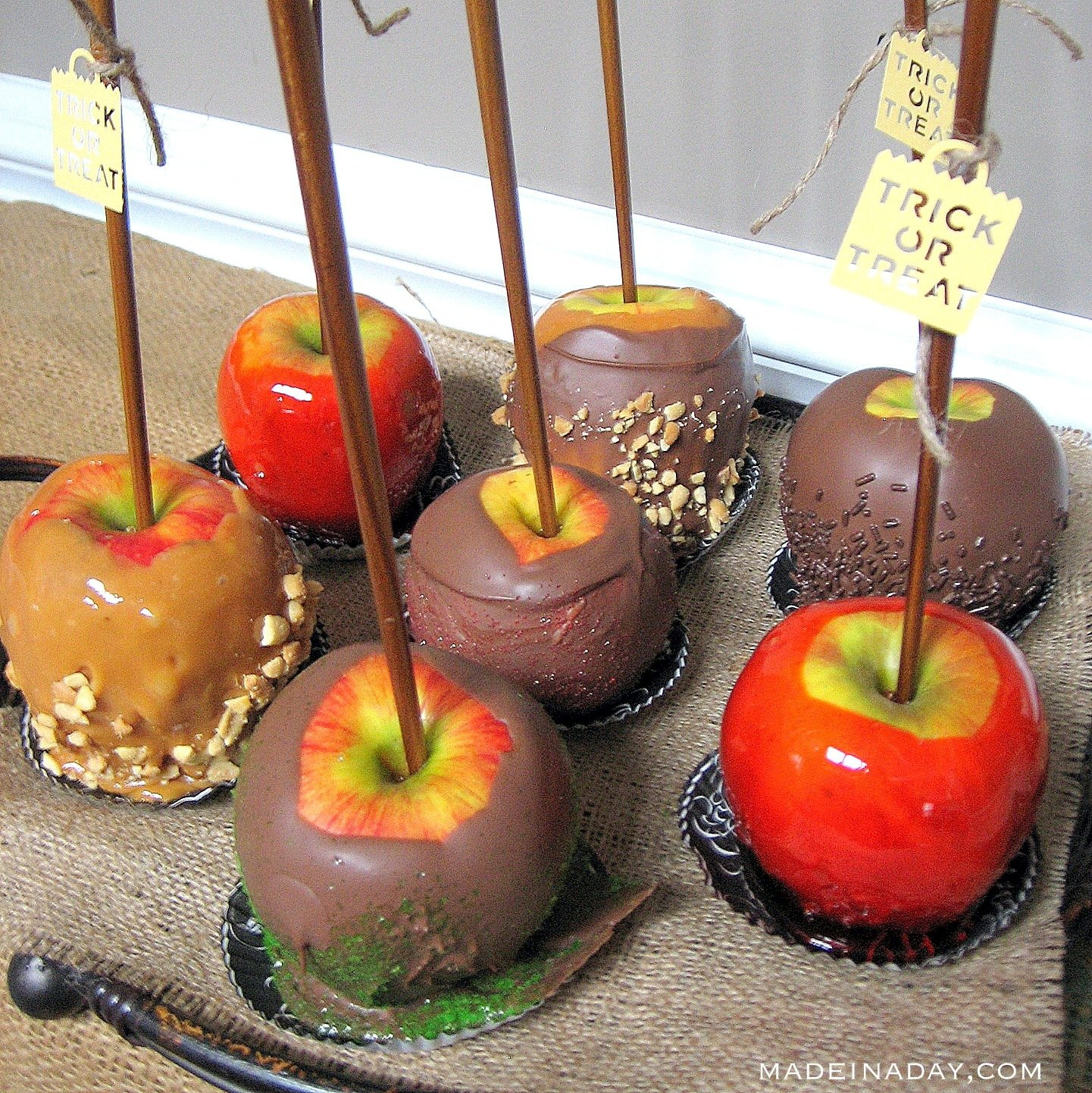 Fall Candy Apple Recipes 4