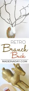 Retro Branch Buck 1