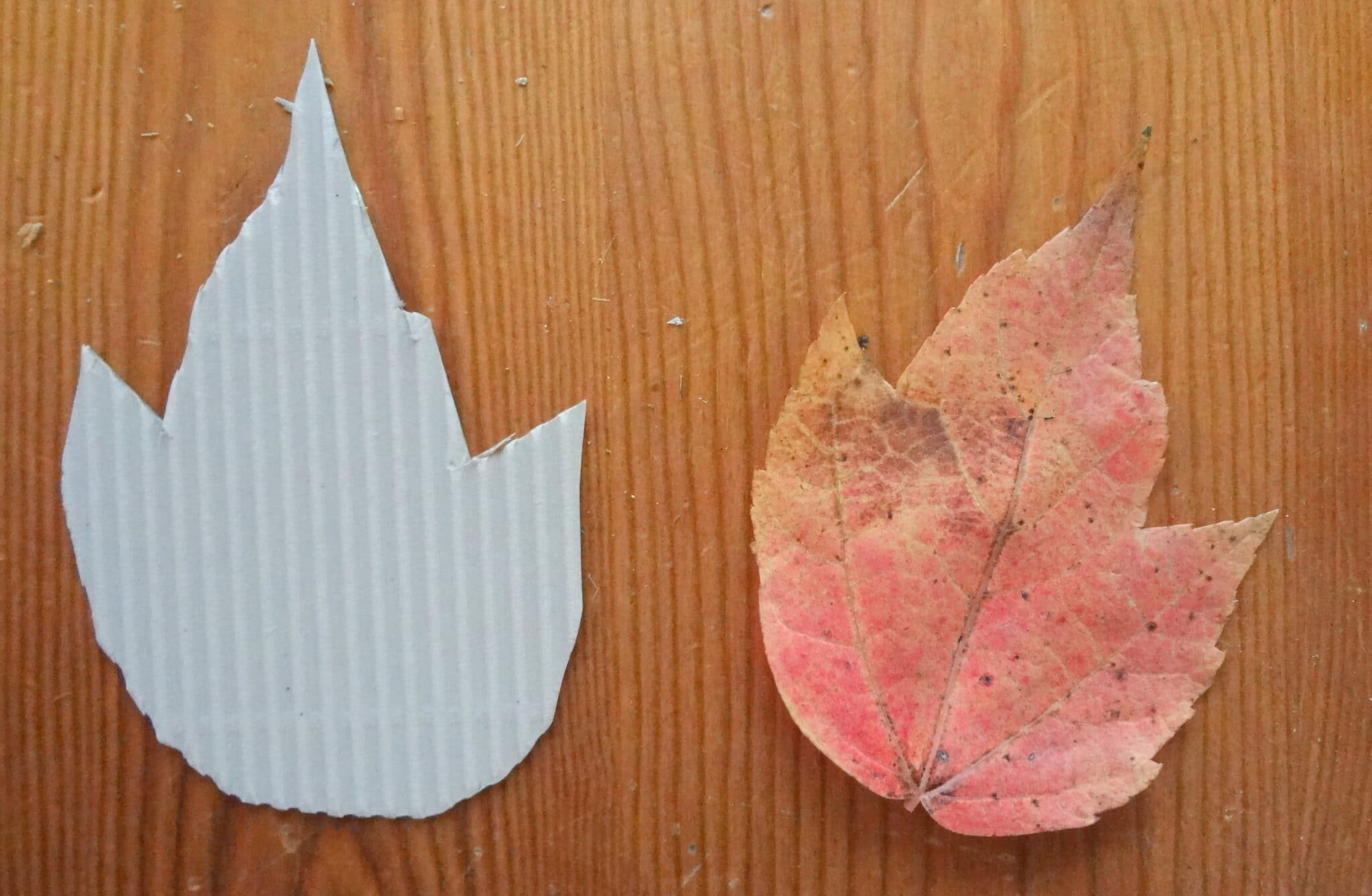 DIY corrugated leaf placecards
