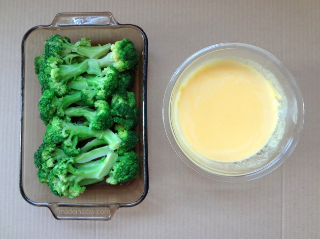 Broccoli Spears and Cheese