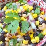 Zesty Tailgate Spinach Dip Recipe 4