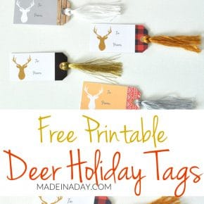 Deer Gift Tags FREE Printable 31