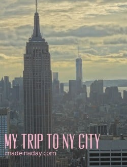 My NY City madeinaday.com