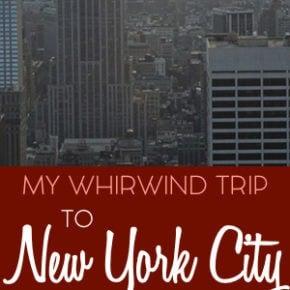 My New York Holiday Trip 6