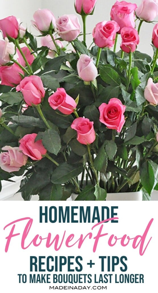 flower food recipes, DIY plant food for cut flowers