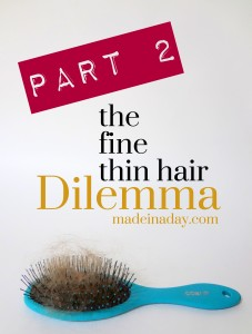 Fine Thin Hair Dilemma Part 2 madeinaday.com
