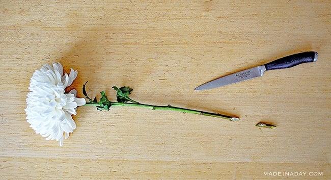 DIY Cut Flower Food Recipes & Tips 2