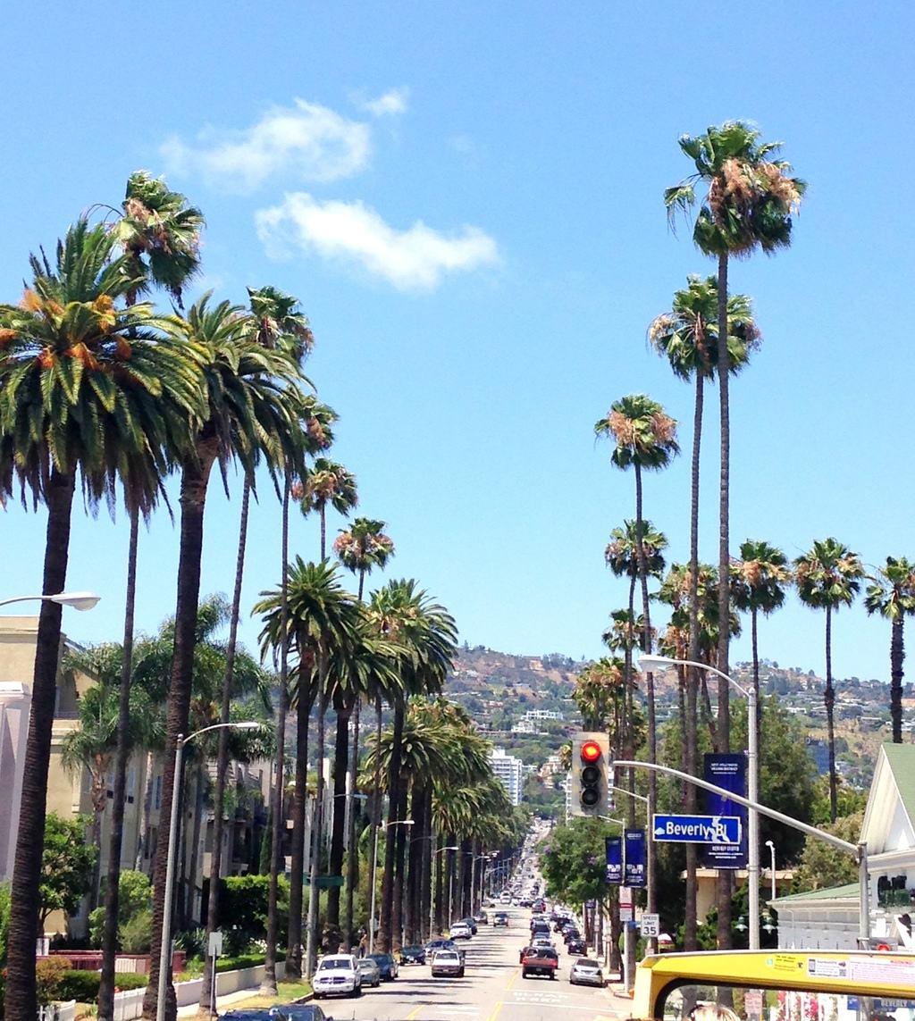 Hollywood California madeinaday.com
