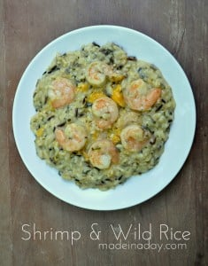 Shrimp Wild Rice madeinaday.com