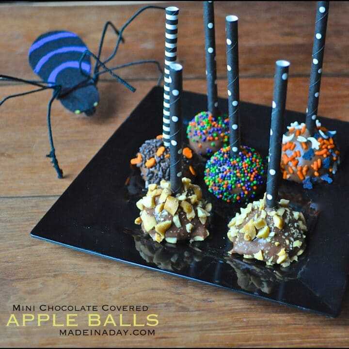 Mini Chocolate Covered Apples
