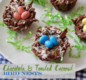 Chocolate Bird Nests Coconut Robin Eggs madeinaday.com