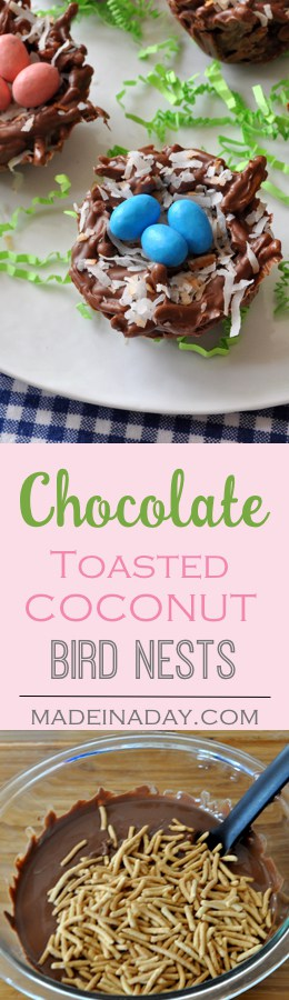 Chocolate & Toasted Coconut Bird Nests