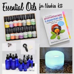 Essential Oils for Newbies Kit madeinaday.com