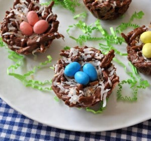 No Bake Chocolate Bird Nests with Coconut madeinaday.com
