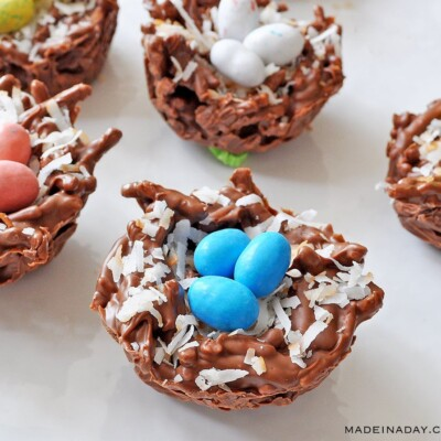 Chocolate Coconut Bird Nests Simple No-bake Recipe