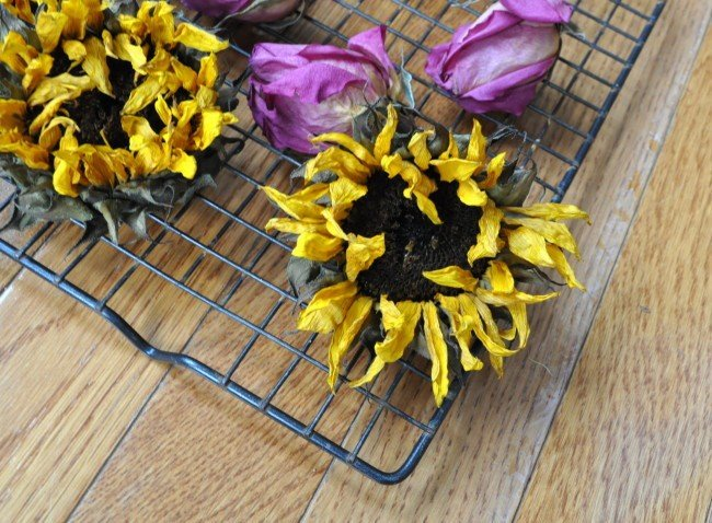 oven dried flowers