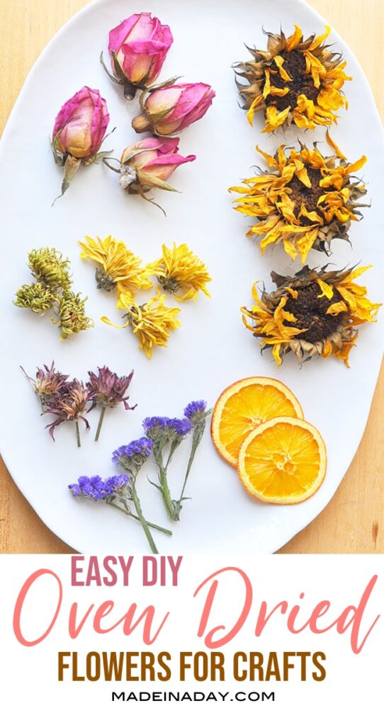 fast DIY oven dried flowers, how to dry flowers
