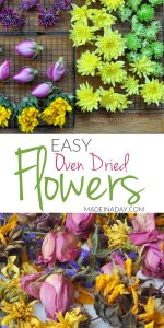 Effortless Oven Dried Flowers for Crafts 1