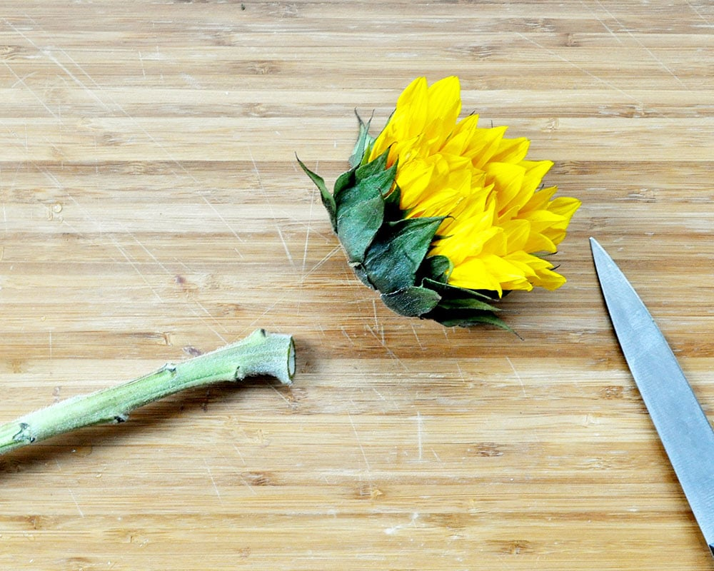how to dry flowers, fastest way to dry flowers, oven dried flowers,