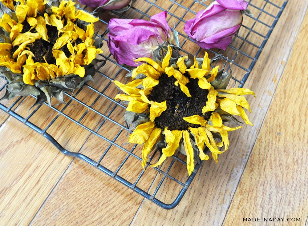 how to dry rose petals in the oven, best way to dry flowers, oven dry flowers, baked dried flowers
