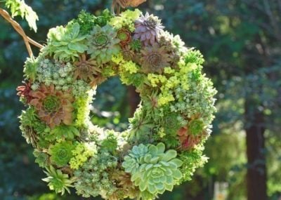 Instructions-on-how-to-make-this-beautiful-succulent-wreath-SQUARE-Small