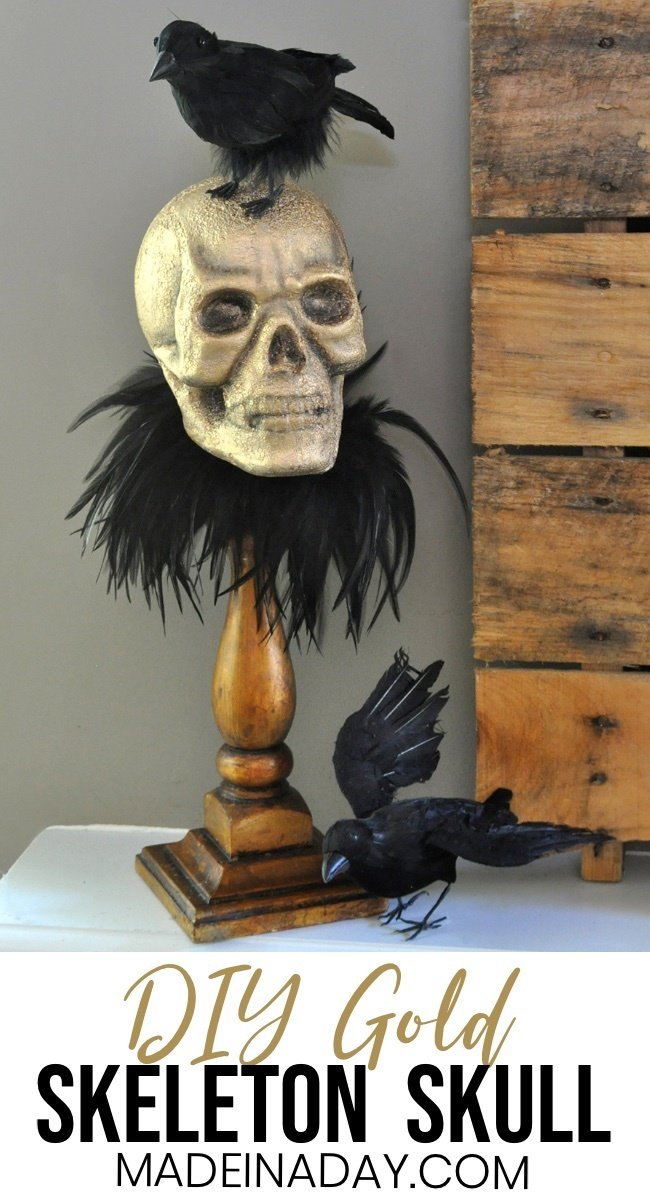 Gold Skull Raven, Crows with a skull