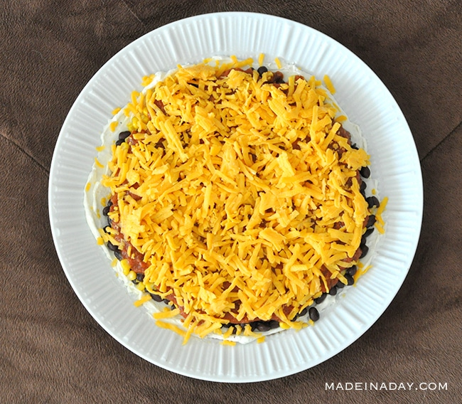 Layered Tex Mex Cheesy Salsa Dip & Game Day Bash 3