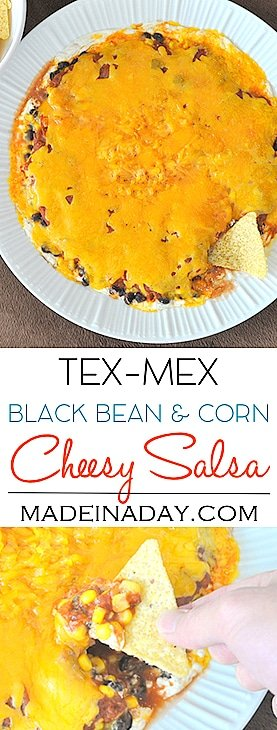 Layered Tex Mex Cheesy Salsa Dip & Game Day Bash 8