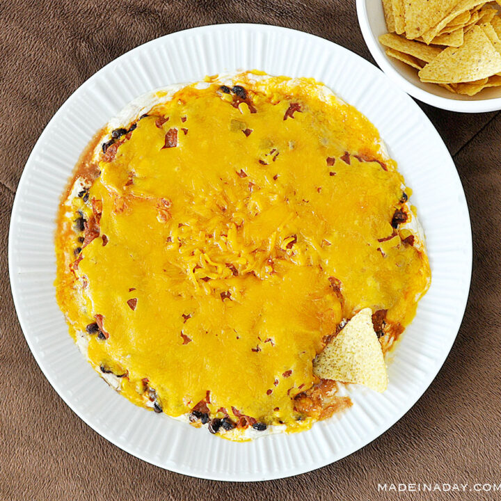 Tex Mex Cheesy Salsa Dip