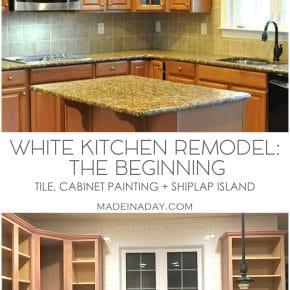 White Kitchen Remodel: The Beginning 1