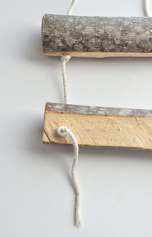 tie a rope through the birch log