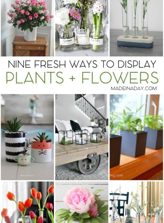 9 Fresh Ways to Display Plants Flowers 35