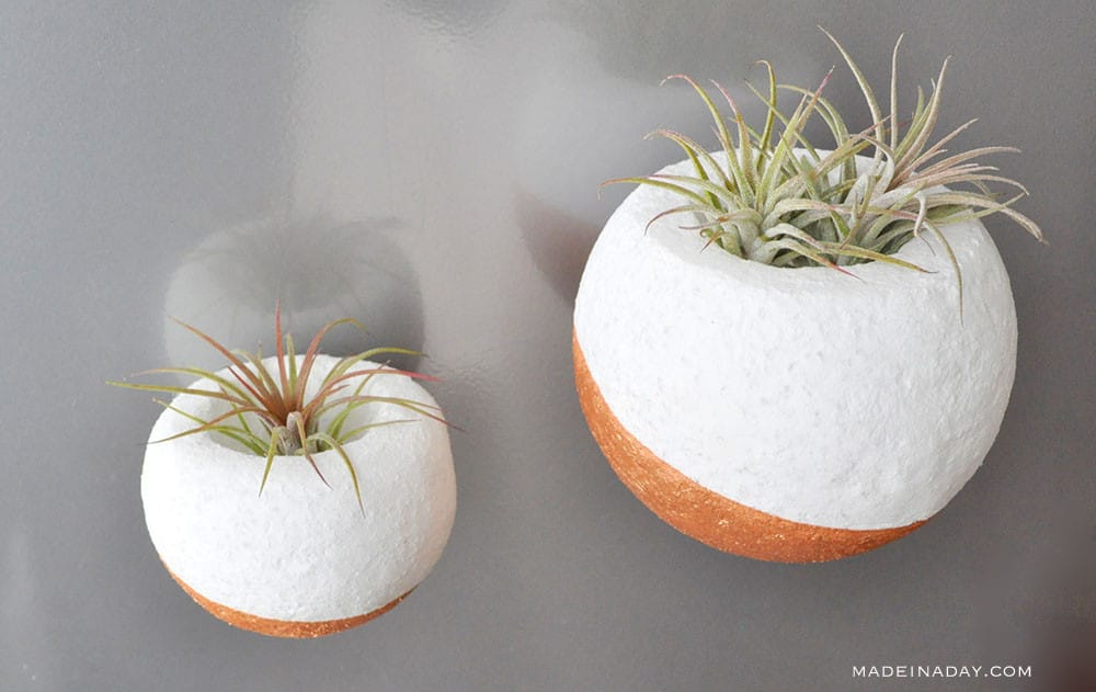 faux concrete air plant holders, air plant orbs, magnetic air plant holder
