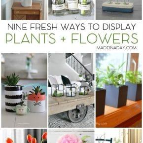 9 Fresh Ways to Display Plants Flowers 1