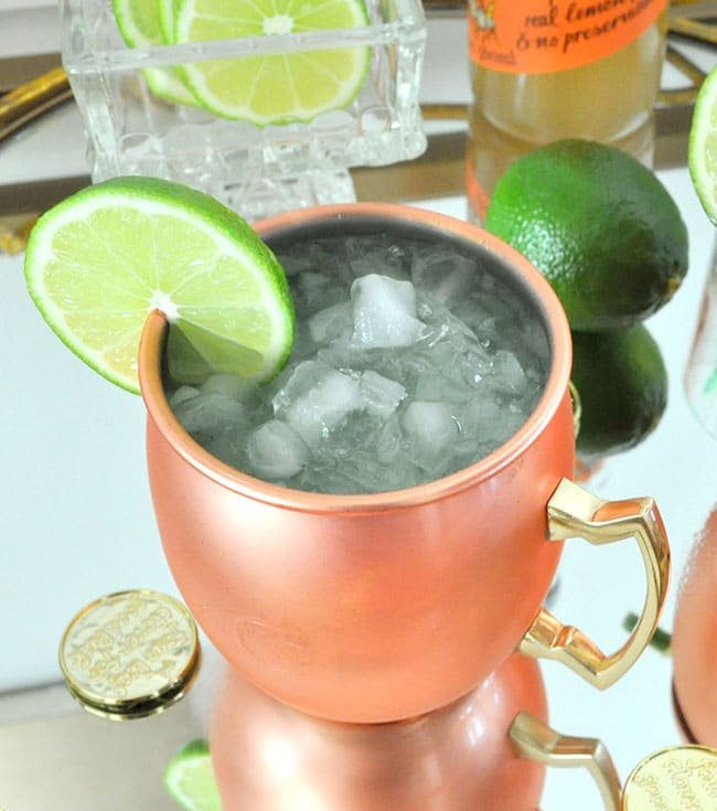 Sparkling Kiwi Strawberry Moscow Mule 3