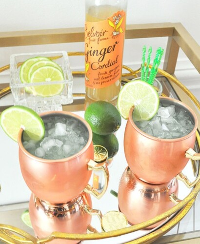 Sparkling Kiwi Strawberry Moscow Mule 31