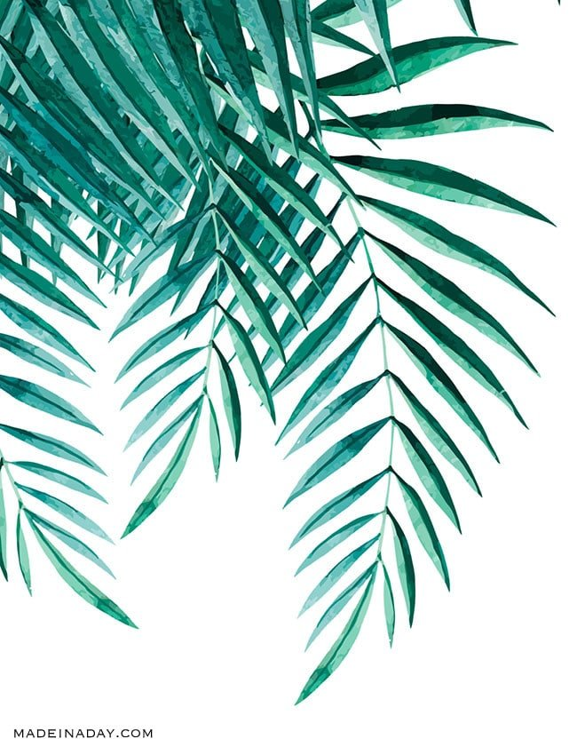 Massif image within palm leaf printable
