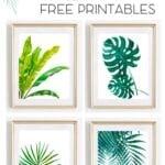 New Tropical Plant 2020 Printable Calendar 3