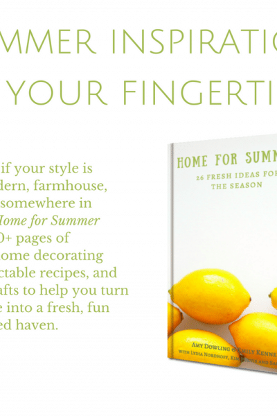 Home for Summer Ebook Launch!