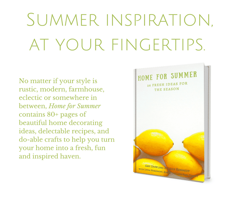 Home for Summer Ebook Launch! 5