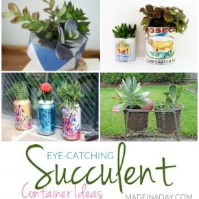 Eye-Catching Succulent Container Ideas 29